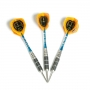 Darts training arrows